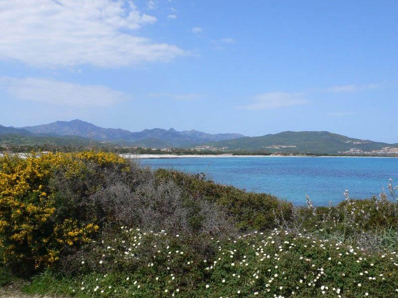 Vacanze a budoni sardegna case vacanza sardegna for Budoni mare